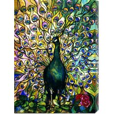 'Fine Peacock' by Tiffany Studios Stretched Canvas Art