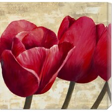 'Red Tulips' by Cynthia Ann Stretched Canvas Art