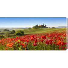'Orcia Valley in Spring, Tuscany' by Fabio Muzzi Photographic Print on Canvas
