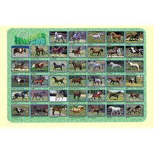 <strong>Painless Learning Placemats</strong> Horses Placemat