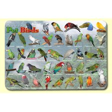 <strong>Painless Learning Placemats</strong> Popular Birds Placemat