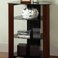 Regal Multi-Level Audio Rack