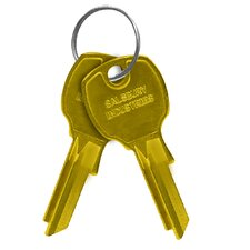 Universal Blank Key for Universal Locks (Set of 50)