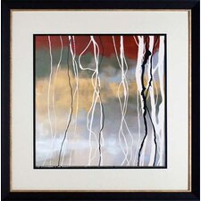 'Silver Birch I' by Laurie Maitland Framed Painting Print