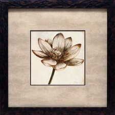 'Sepia Lotus II' by Patricia Pinto Framed Painting Print