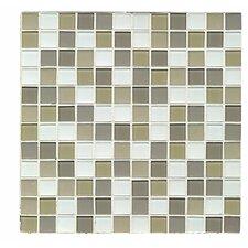 Mosaic Gloss/Matte Combo Tile in Hancock Park