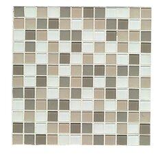 Mosaic Gloss/Matte Combo Tile in Nob Hill