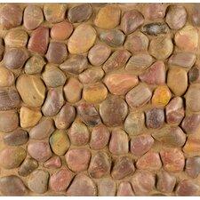 Hemisphere Pebble Stone Polished Mosaic Tile in Henna Red