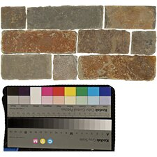 "6"" x 12"" Stone Mosaic Liner Tile in Rajah Multicolor"
