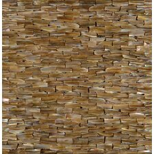 "11.75"" x 12"" Mosaic Natural Fin Relief Shell"
