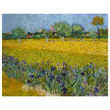'View of Arles with Irises' by Vincent Van Gogh Painting Print on Canvas