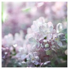 'Lilacs' by Silvia Cook Photographic Print on Canvas