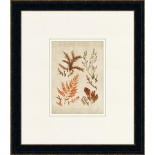 <strong>Epic Art</strong> Fitch Sealife IX Wall Art