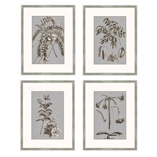 <strong>Epic Art</strong> Buchoz Flowers on Gray I Wall Art Collection