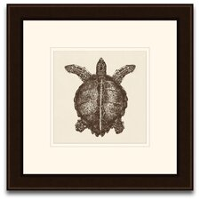 <strong>Epic Art</strong> Turtle Wall Art