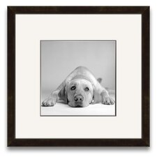 A Cherished Companion Tally Wall Art
