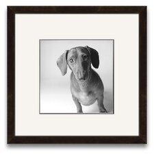 A Cherished Companion Cecil Wall Art