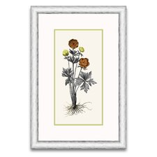 <strong>Epic Art</strong> Floral Persimmon and Citriana I Wall Art