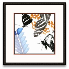 <strong>Epic Art</strong> Flora Moderna Butterfly Inflorescence II Wall Art