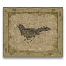 Blackbird Framed Graphic Art in Antique