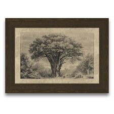 <strong>Epic Art</strong> Timeless Timber Baobab Tree Wall Art