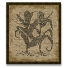 <strong>Epic Art</strong> The Botanist's Measure Sorgumfructu Wall Art