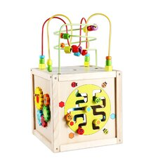Multi-Activity Cube with Wheels