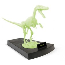 Jurassic Night Velociraptor Skeleton