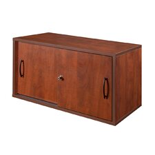 "Sandia 30"" Wall Mount/Desk Surface Storage Cabinet"