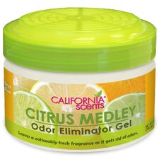 Citrus Medley Odor Eliminators Gel - 12-oz.