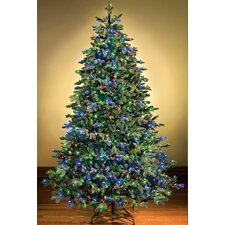 Pre-Lit Sequoia Tree with Multi Colored Lights