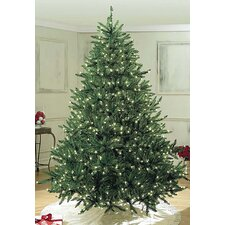 Pre-Lit Sequoia Tree with Pure White Lights