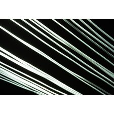 White Lines Graphic Art on Canvas