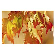 Autumn Leaves by Angie Turner Decorative Doormat