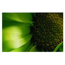 Green Flower by Robin Dickinson Decorative Doormat