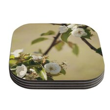 Pear Blossom by Catherine McDonald Coaster (Set of 4)