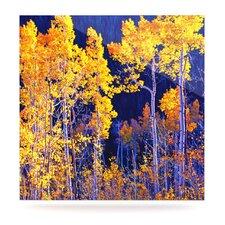 Aspen Trees by Maynard Logan Photographic Print Plaque