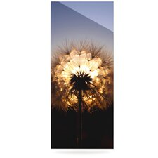 Glow by Skye Zambrana Photographic Print Plaque