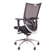 <strong>Synergie</strong> Incentive High Back Ergonomic Mesh Task Chair with Arms