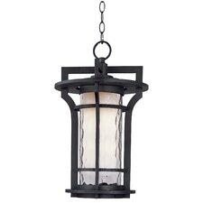 Oakville 1 Light Outdoor Hanging Lantern