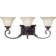 Allentown 3 Light Vanity Light