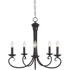 Shwan 5 - Light Single - Tier Chandelier