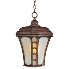 Lake Shore VX ES 1 Light Outdoor Hanging Lantern