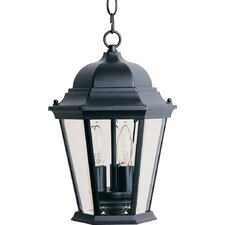 Wagner 3 - Light Outdoor Hanging Lantern