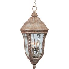 Whitter VX 3 Light Outdoor Hanging Lantern