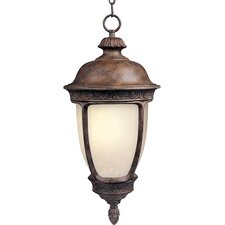 Knob Hill ES 1 Light Outdoor Hanging Lantern