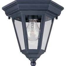 Wagner 1 - Light Outdoor Ceiling Mount