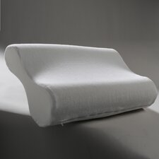 Anti Snore Contour Memory Foam Standard Pillow