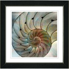 """""""Nautilus Sea Shell"""" by Zhee Singer Framed Fine Art Giclee Painting Print"""