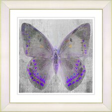 """Dusk Butterfly - Purple"" by Zhee Singer Framed Fine Art Giclee Print"